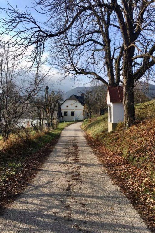 Am Weg von Alland nach Maria Raisenmarkt. Fotos Veronika Schöll