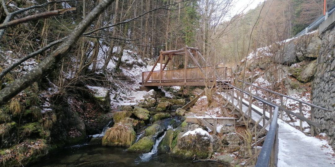 Brücke an der Hausteinhöhle. Foto: Peter Ofner