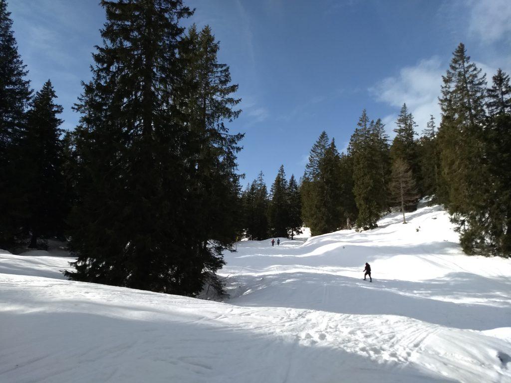 Am Kienbergsattel. Foto: Nikolaus Vogl