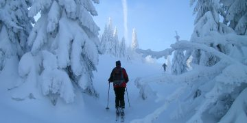 Skitour auf den Tirolerkogel
