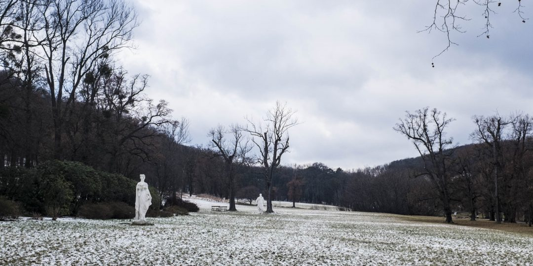 Pötzleinsdorfer Schlosspark. Foto: Birgit Reiter