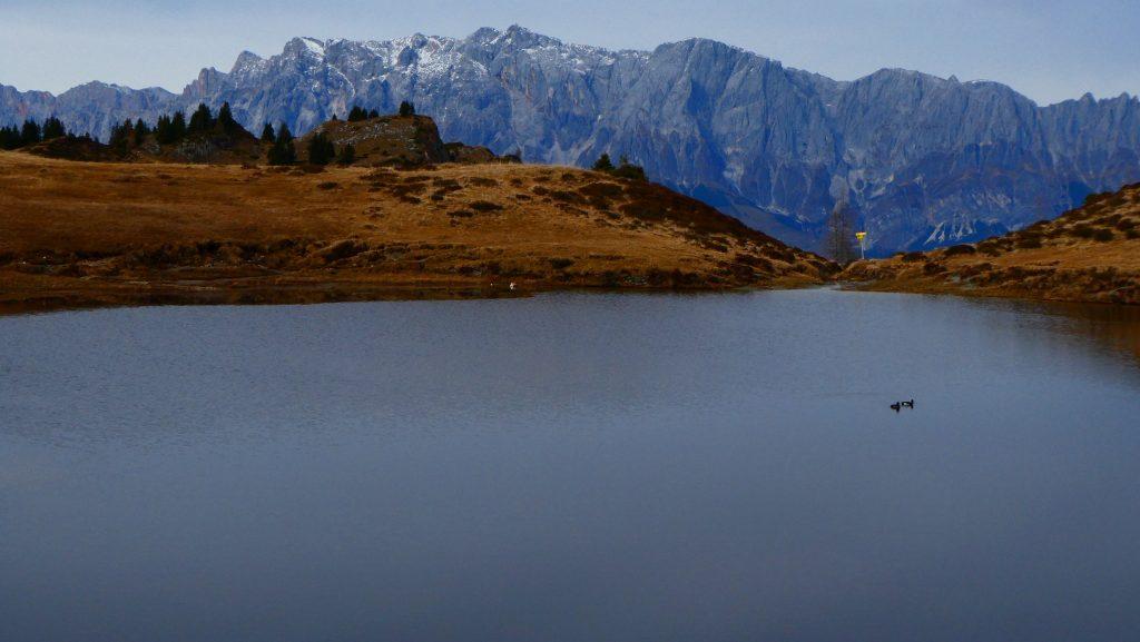 Kleiner Paarsee gegen Hochkönig. Foto: Karl Plohovich