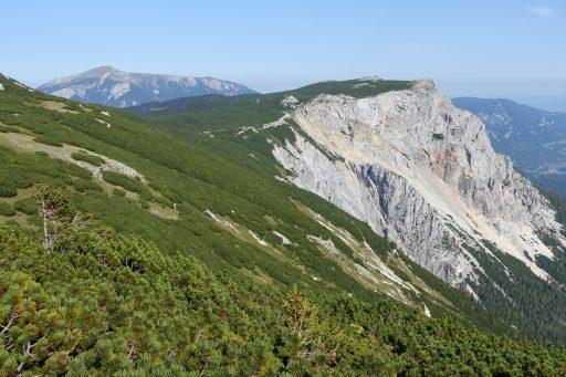 Blick vom Waxriegel zur Preinerwand, im Hintergrund der Schneeberg. Foto: Alpenverein Edelweiss