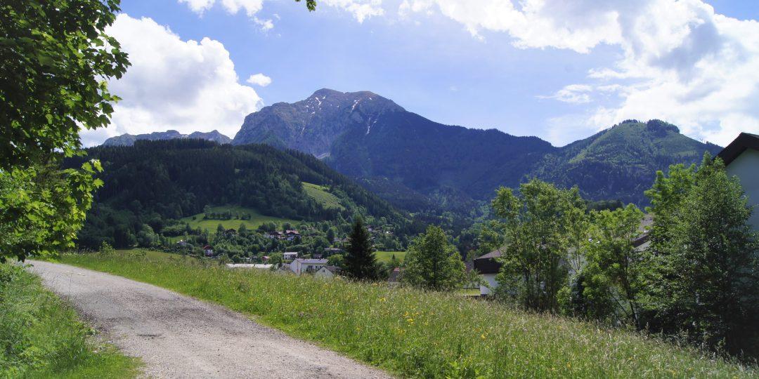 WohlfühlWeg Kleine Wurrunde. Foto: Naturfreunde Österreich