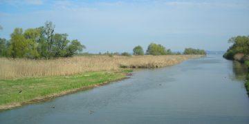 """41 Natura Trail """"Das Rheindelta"""""""