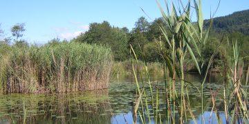 "5 Natura Trail ""Im Keutschacher Seental"""