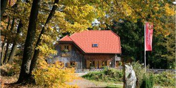 9: Von Wilhelmsburg zur Ochsenburgerhütte