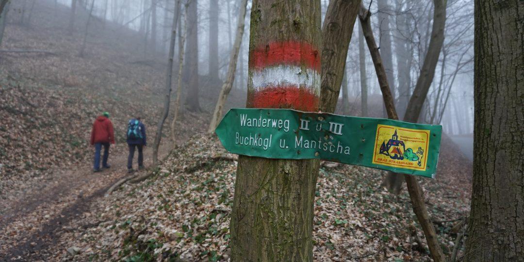 Auf dem Wanderweg. Foto: Daniel Strohrigl