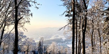 Schnee-Juchee am Pfenningberg