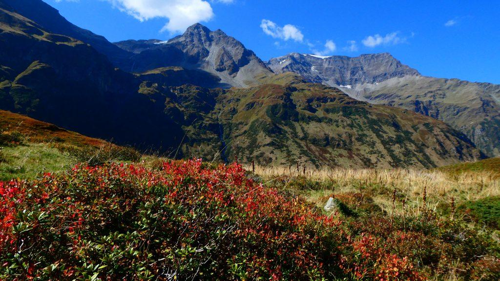 Herbstfarben - Rückblick zum Sparangerkopf und Schareck (rechts). Foto: Karl Plohovich