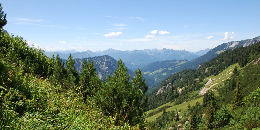 Natura Trail Kaisergebirge. Foto: Andrea Lichtenecker