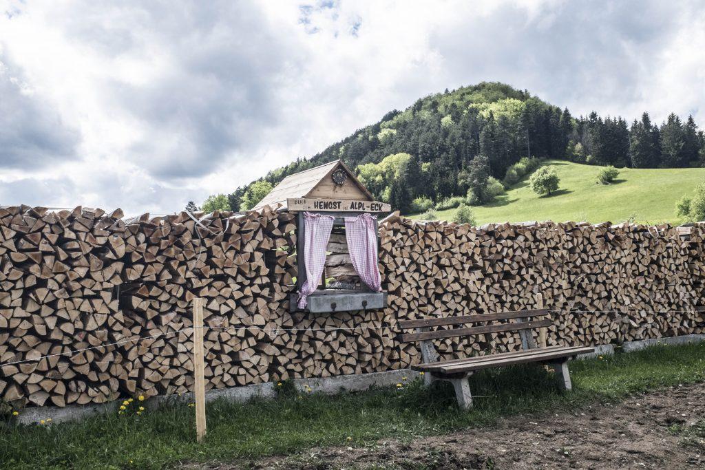 Beim Mostheurigen Steurer. Foto: Birgit Reiter