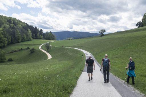 Landschaft bei Gutenmann 1. Foto: Birgit Reiter