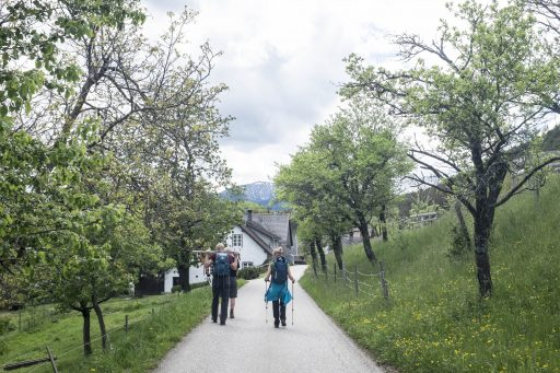 Gehöft in Gutenmann. Foto: Birgit Reiter
