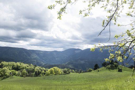 Blick auf die südlichen Ausläufer des Schneebergs. Foto: Birgit Reiter