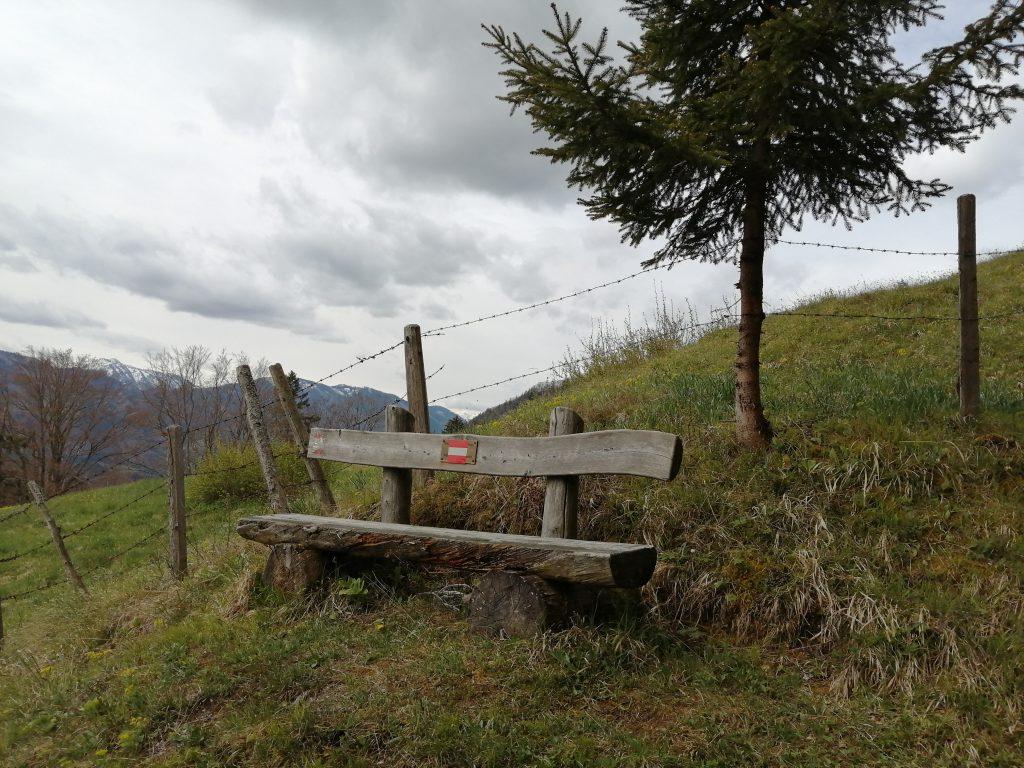 Am Weg zum Obermitterkogel kann man die Aussicht ins Ybbstal genießen. Foto: Jürgen Birgl