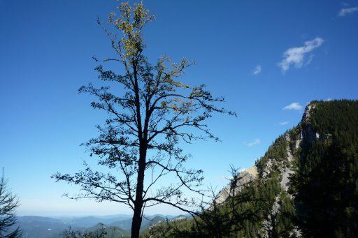 Auf dem Fadenweg. Foto: Alpenverein Edelweiss