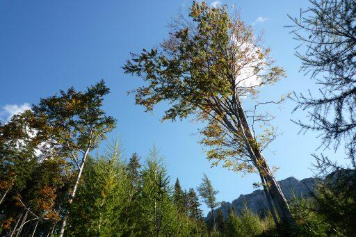 Auf dem Fadenweg, Blick zu den Fadenwänden. Foto: Alpenverein Edelweiss
