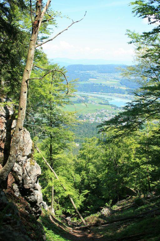 Blick ins Rosental. Foto: Birgit Frank
