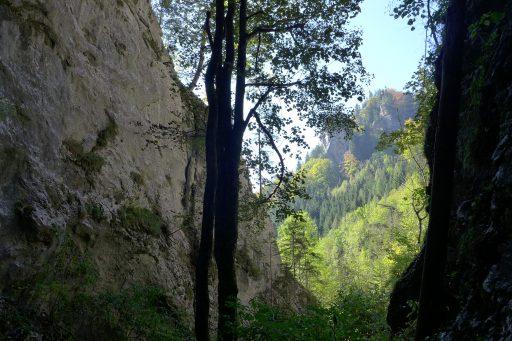 In der Weichtalklamm 1. Foto: Alpenverein Edelweiss