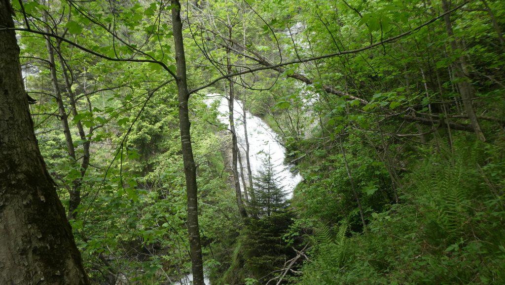 Kirchbach Wasserfall. Foto: Karl Plohovich