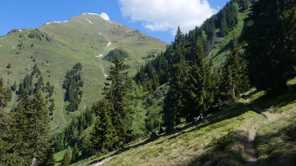 Gamskarkogel (2.467 Meter). Foto: Karl Plohovich
