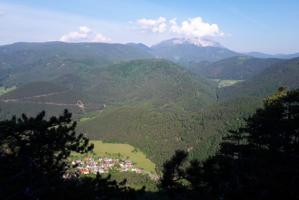 Schneebergblick