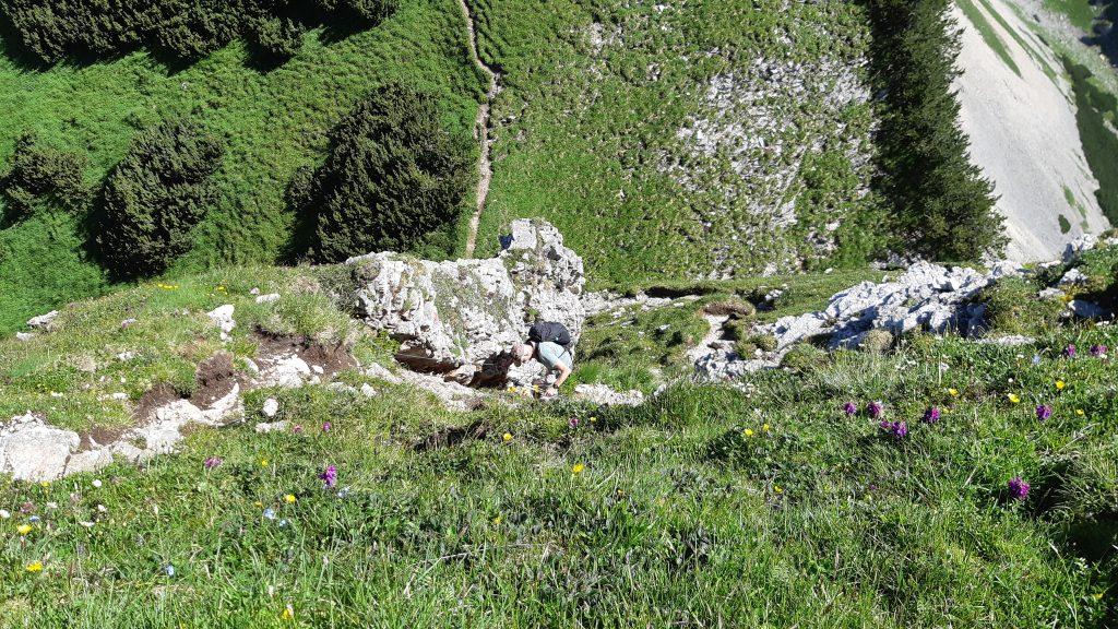 Abstieg vom Dalfazer Roßkopf. Foto: Konrad Gwiggner