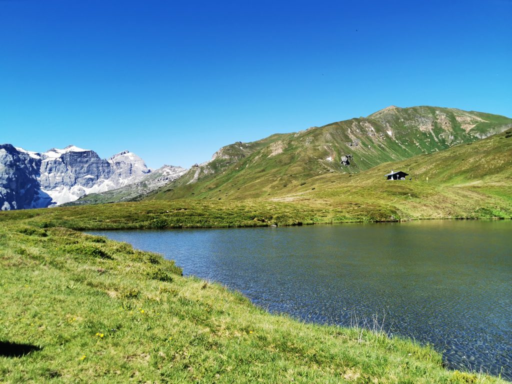 Am Ufer des Lichtsees