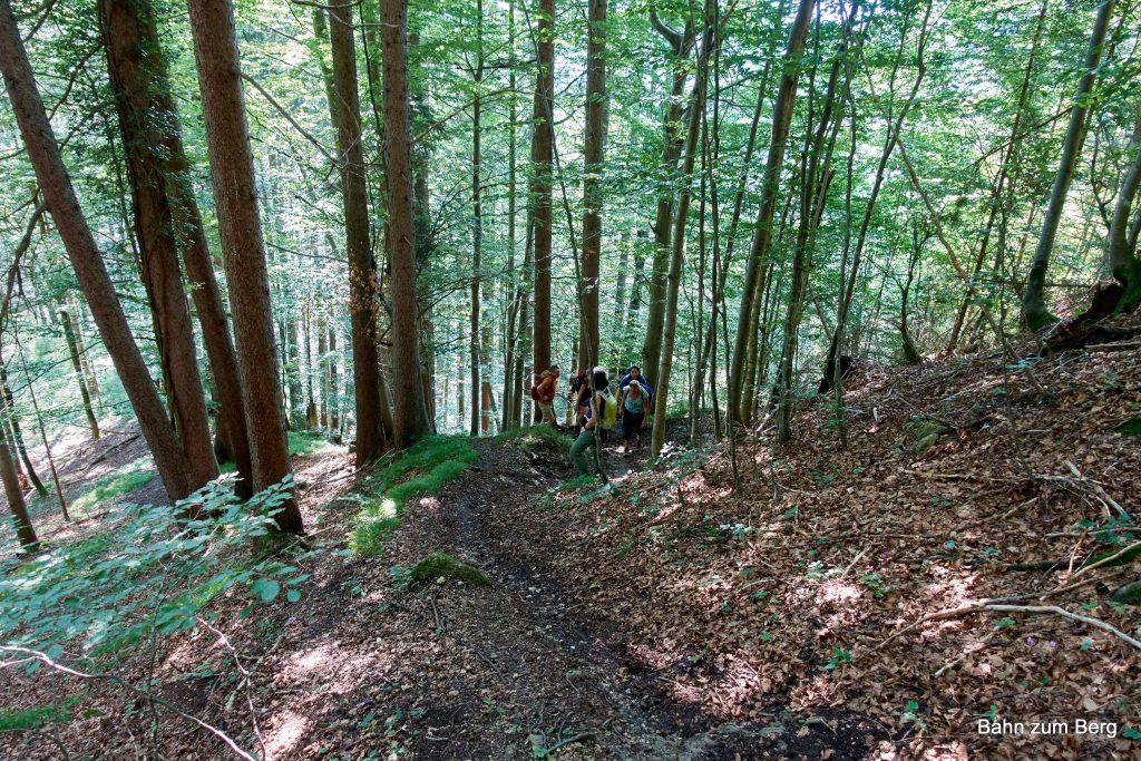 Aufstieg im Wald zur Teufelskirche. Foto: Martin Heppner