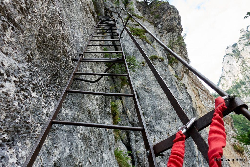Erste Leiter des Alpenvereinssteigs. Foto: Martin Heppner