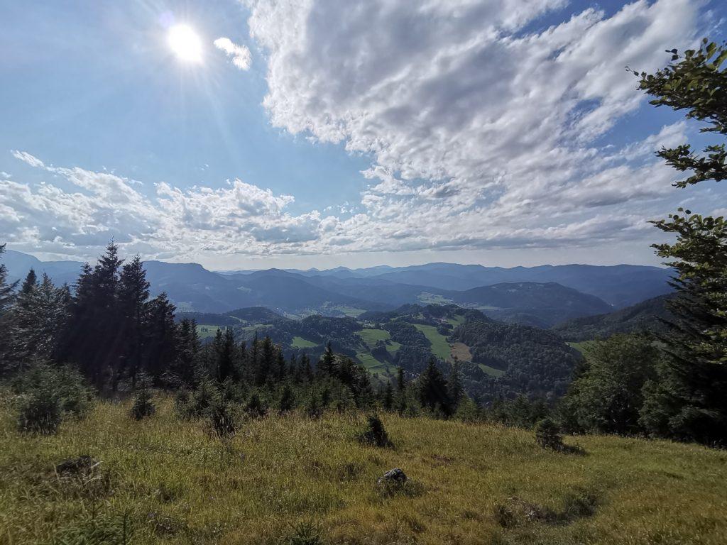 Aussicht beim Waldegger Haus. Foto Veronika Schöll