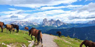 4 Tage in den Dolomiten - von Brixen nach Klausen