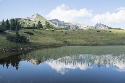 Spiegelung im namenlosen Minisee. Foto: Birgit Reiter