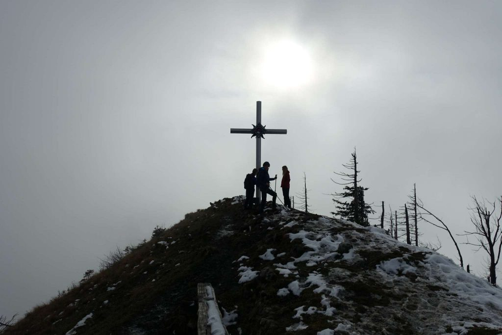 Gipfel Almkogel (1.513m)
