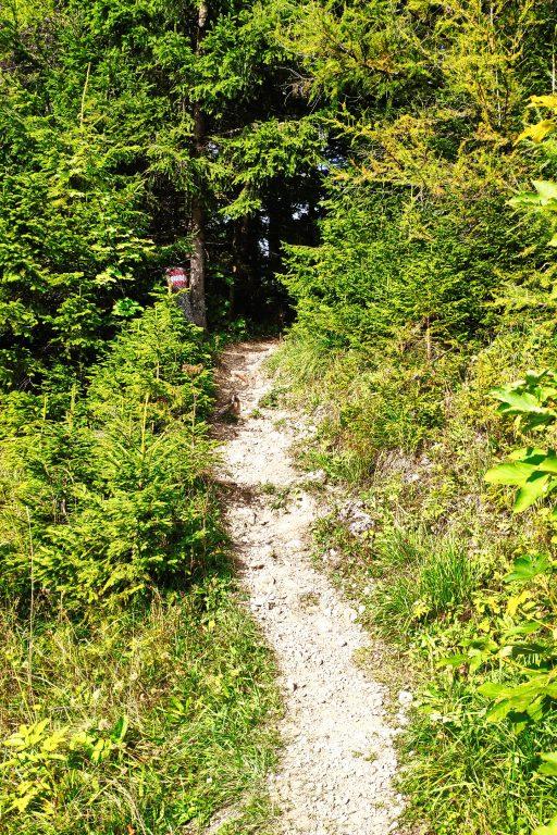 Beginn des Wanderwegs 1. Foto: Birgit Matzinger