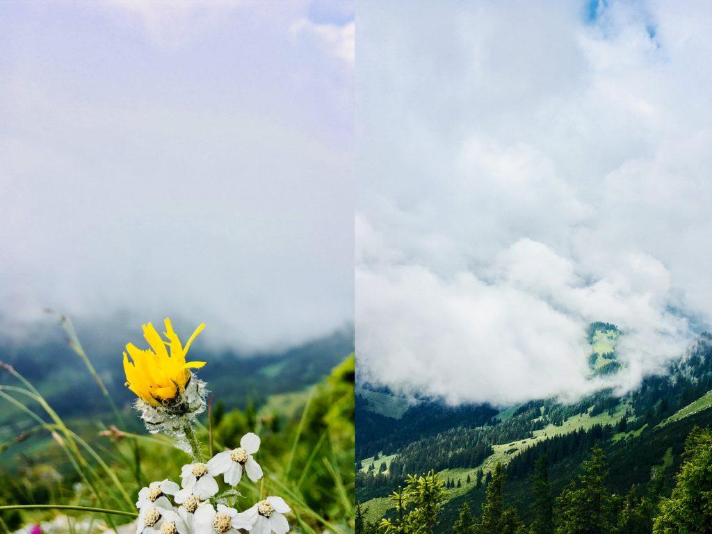 Wolken, Vegetation und Wolken (Fotos: Stefan Hochhold)