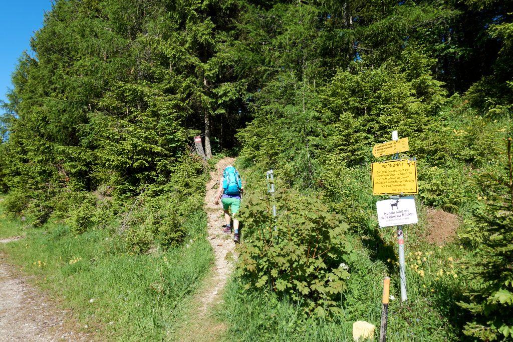 Wanderstart am Seebergsattel. Foto Veronika Schöll